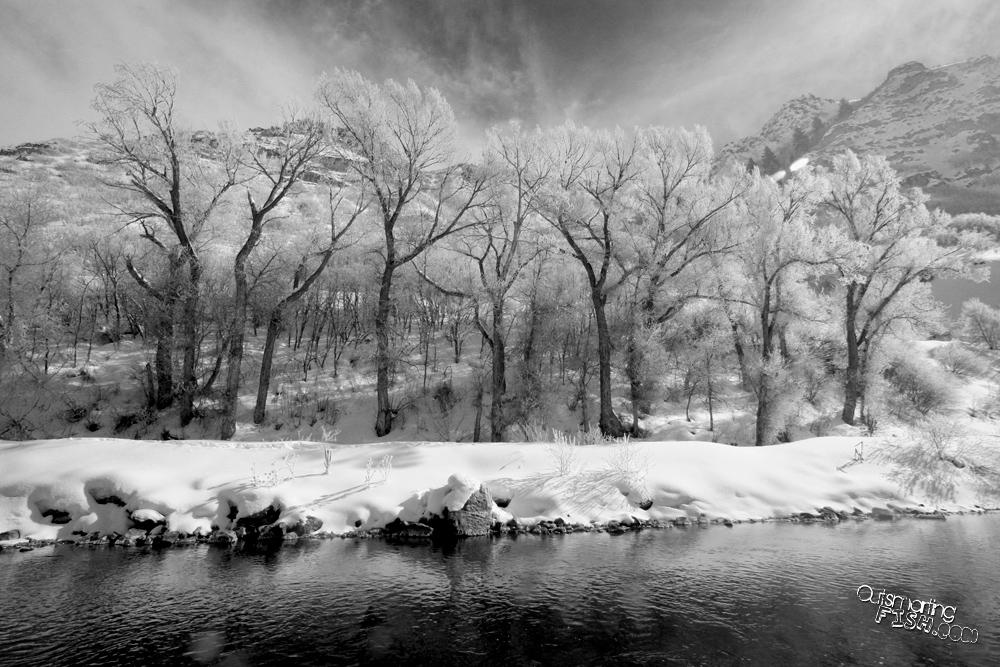 beautiful snowy scene on provo river