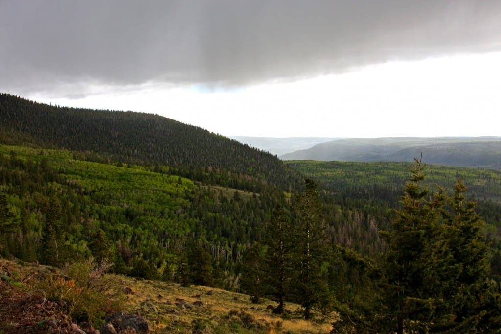 Boulder Mountain