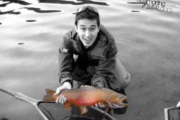 fat-tiger-trout