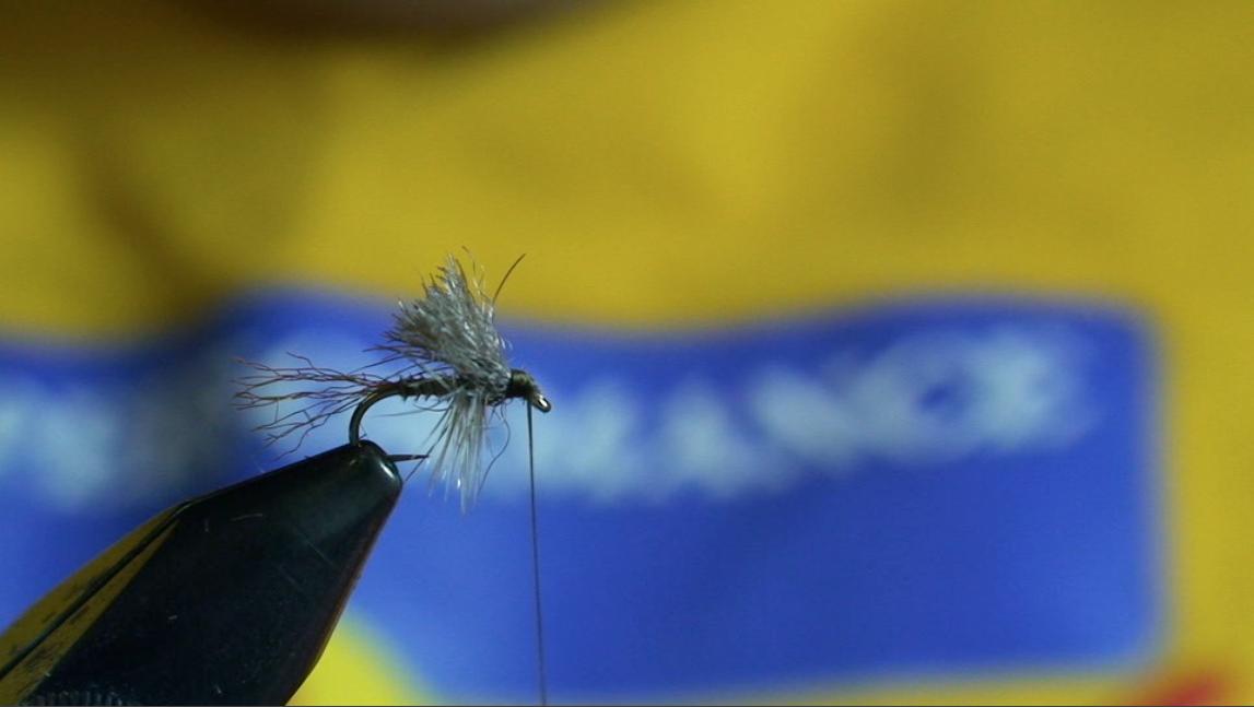bwo-fly-pattern-10