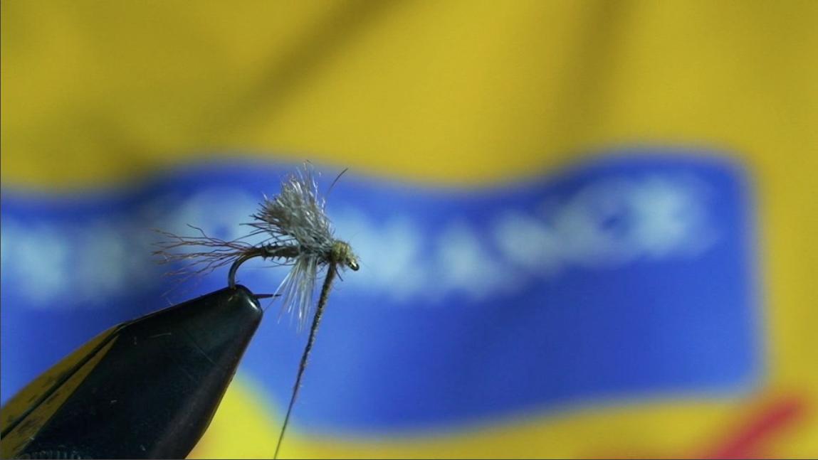 bwo-fly-pattern-11