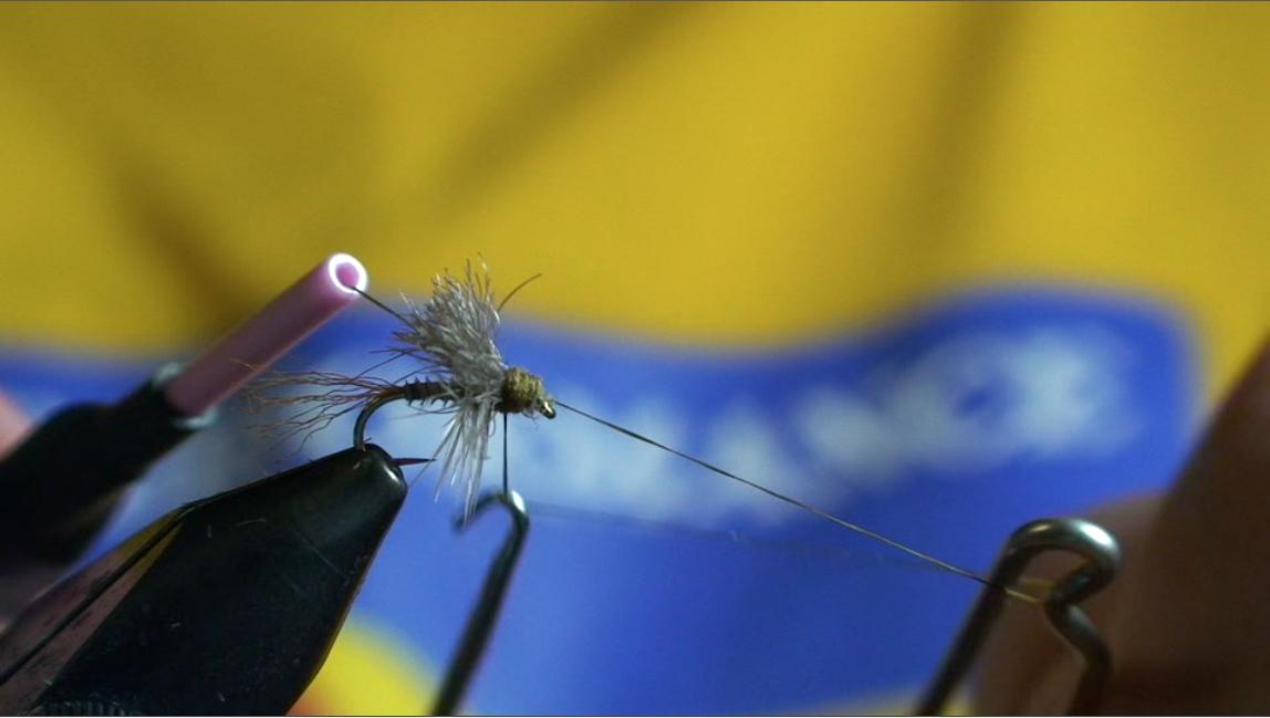 bwo-fly-pattern-12
