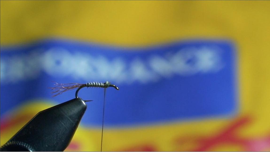 bwo-fly-pattern-5