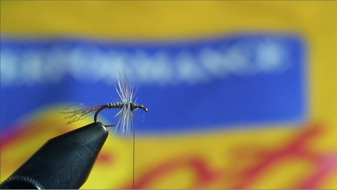 bwo-fly-pattern-6