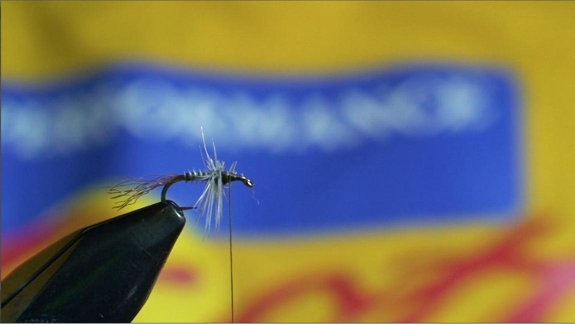 bwo-fly-pattern-7