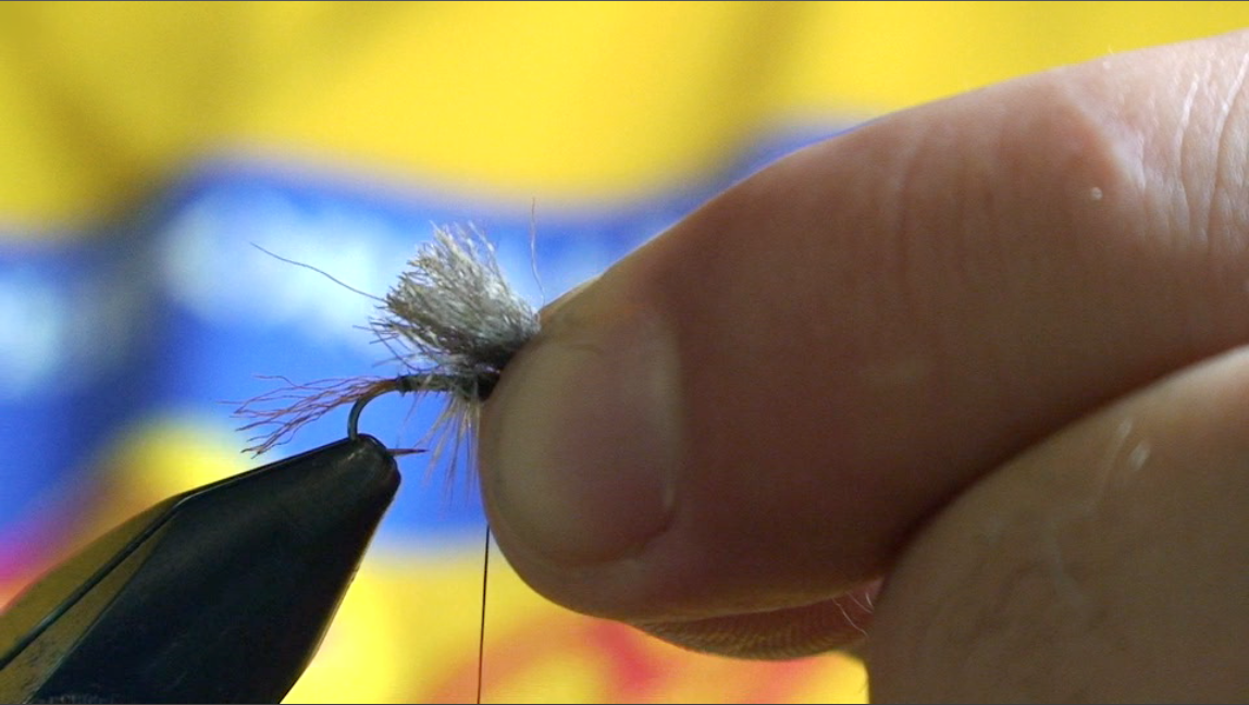 bwo-fly-pattern-8