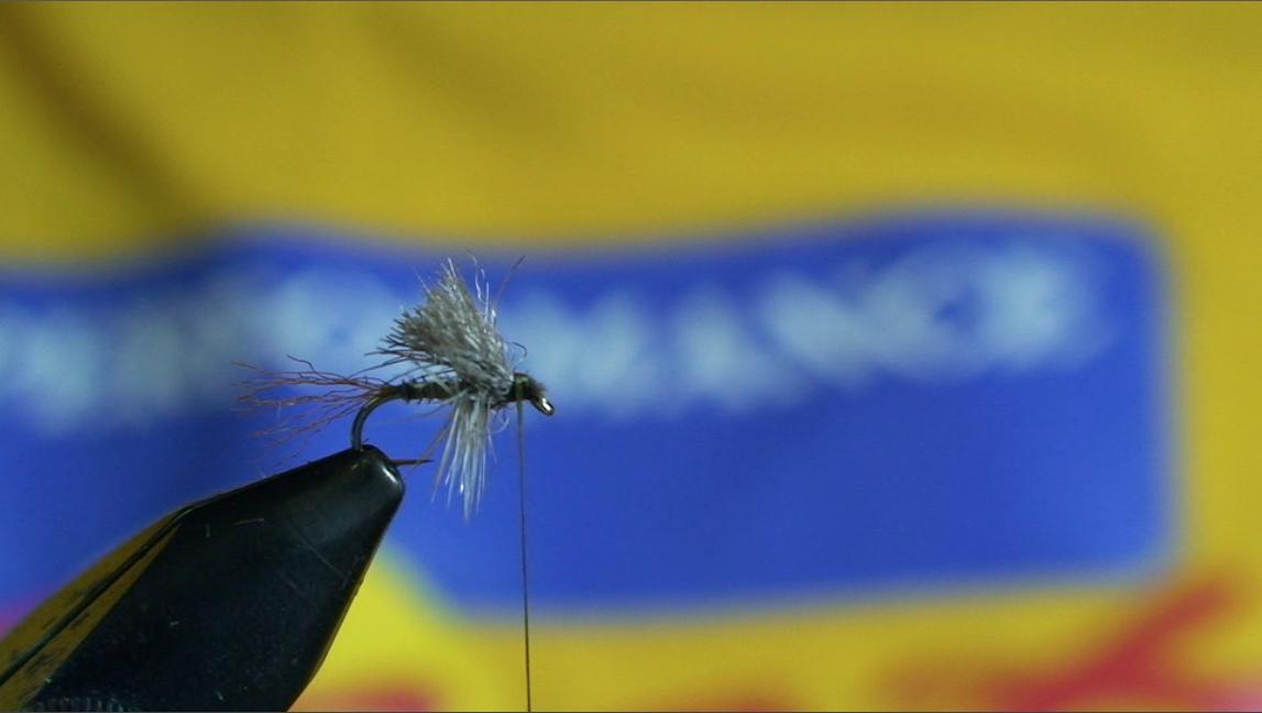 bwo-fly-pattern-9