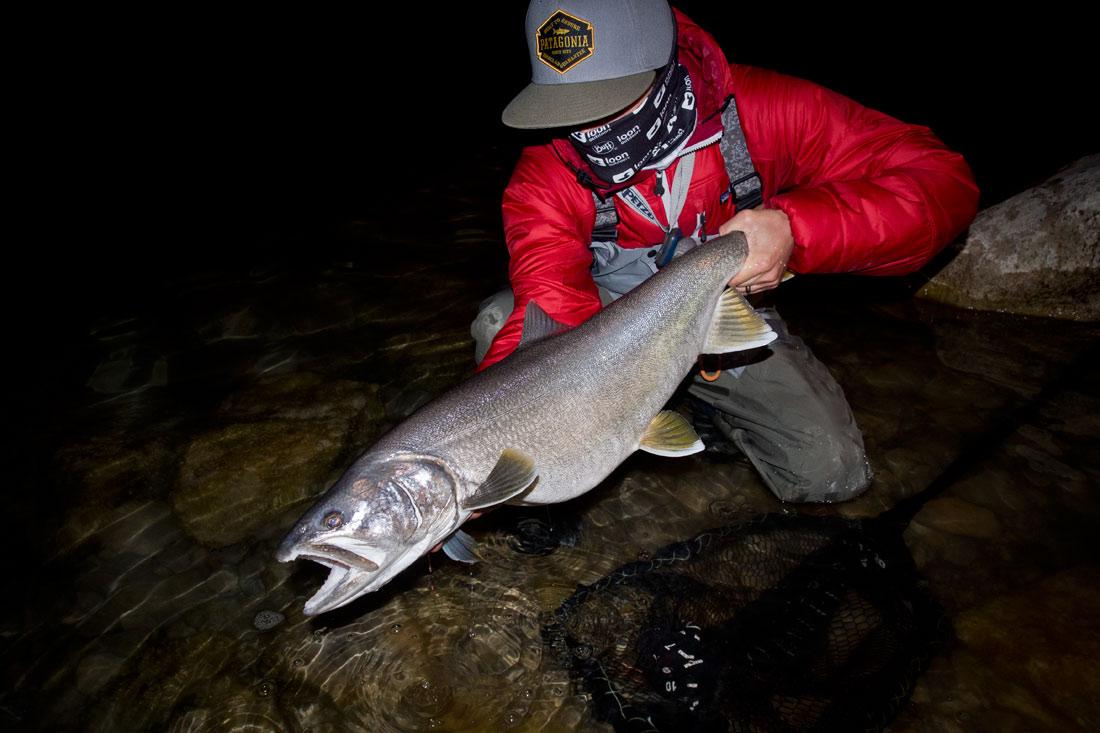 utah-lake-trout